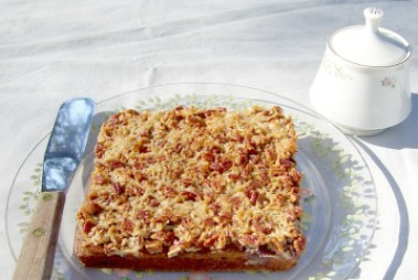 Old Fashioned Oatmeal Cake with Craisins